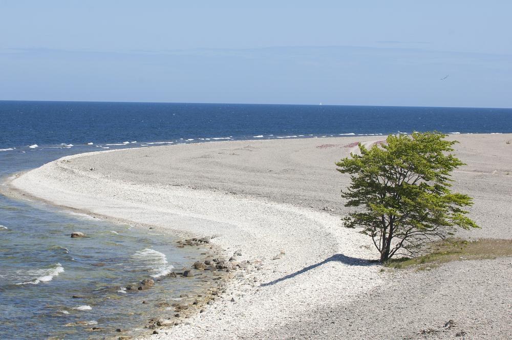 Wapienne wybrzeże Gotlandii